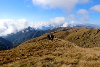 Hiking in the Andes Mountains