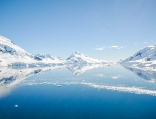 15 Fast Facts About Antarctica